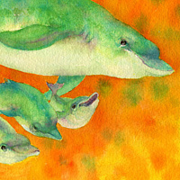 Watercolor Dolphin Play by Lisa  Baechtle