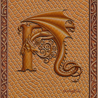 Draco Token H, Gold on Gold by Sue Ellen Brown