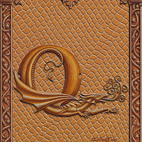 Draco Token Q, Gold on Gold by Sue Ellen Brown