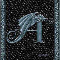 Draco Token A, Silver on Black by Sue Ellen Brown