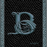 Draco Token B, Silver on Black by Sue Ellen Brown