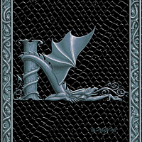 Draco Token K, Silver on Black by Sue Ellen Brown