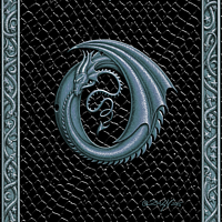 Draco Token O, Silver on Black by Sue Ellen Brown