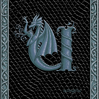 Draco Token U, Silver on Black by Sue Ellen Brown