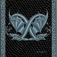 Draco Token X, Silver on Black by Sue Ellen Brown