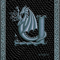 Draco Token Y, Silver on Black by Sue Ellen Brown