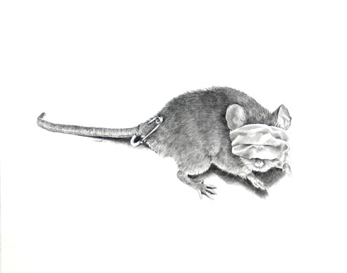 Drawing One Blind Mouse by Ellen Cornett