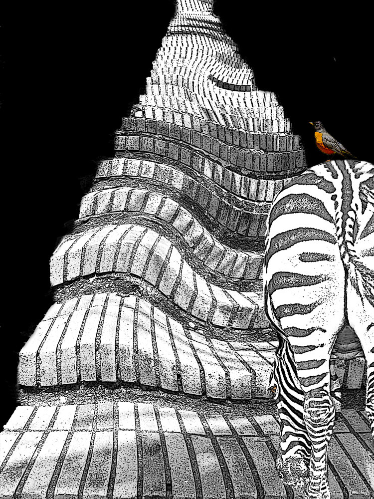 ZEBRA,STAIRS AND BIRD by Joeann Edmonds-Matthew