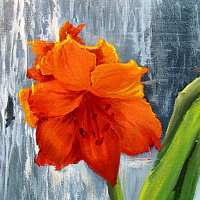 Oil painting  Nats Amaryllis by Barbara Haviland