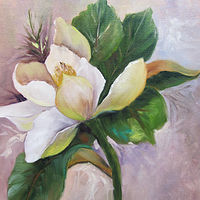 Oil painting  Magnolia  by Barbara Haviland