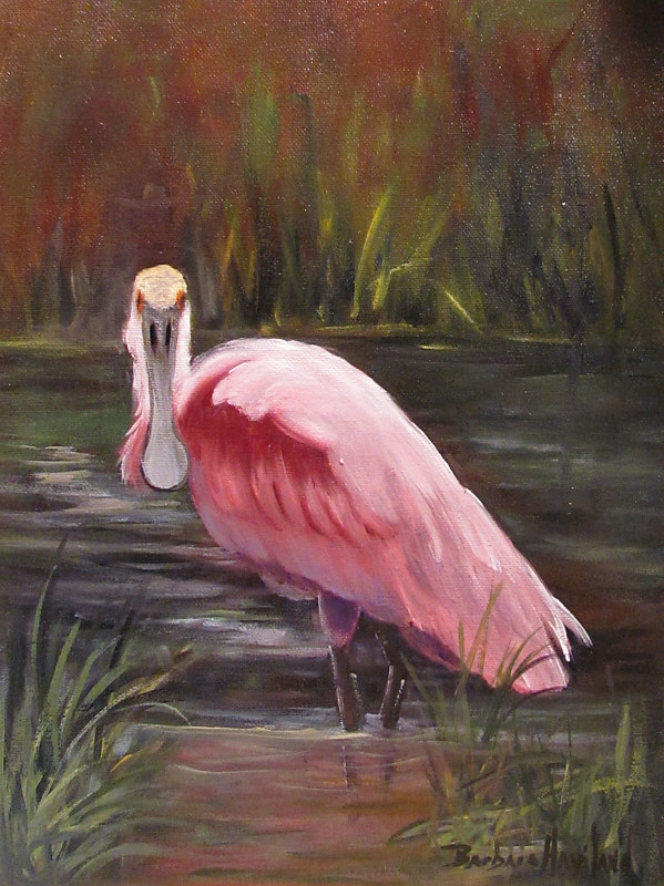 Oil painting  SpoonBill Roseate Bird by Barbara Haviland