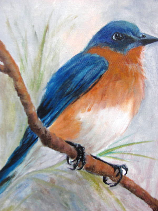 Oil painting  BlueBird on a Limb by Barbara Haviland