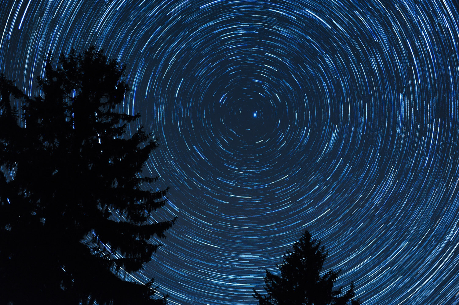 Star trail 2 by Dawn Reilly