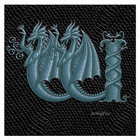 "Print Dragon Letter 'W' 1.0, Silver on Jet Black Dragonskin, 6""x6"" by Sue Ellen Brown"