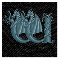 "Print Dragon Letter 'W' 1.0, Silver on Jet Black Dragonskin, 8""x8""  by Sue Ellen Brown"