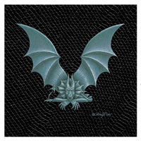 "Print Dragon V, 8""x 8"" Silver on Jet Black Dragonskin by Sue Ellen Brown"