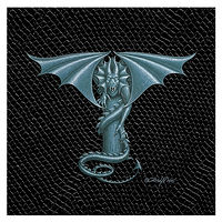 "Print Dragon T-1.0, 6""x 6"" Silver on Jet Black Dragonskin by Sue Ellen Brown"