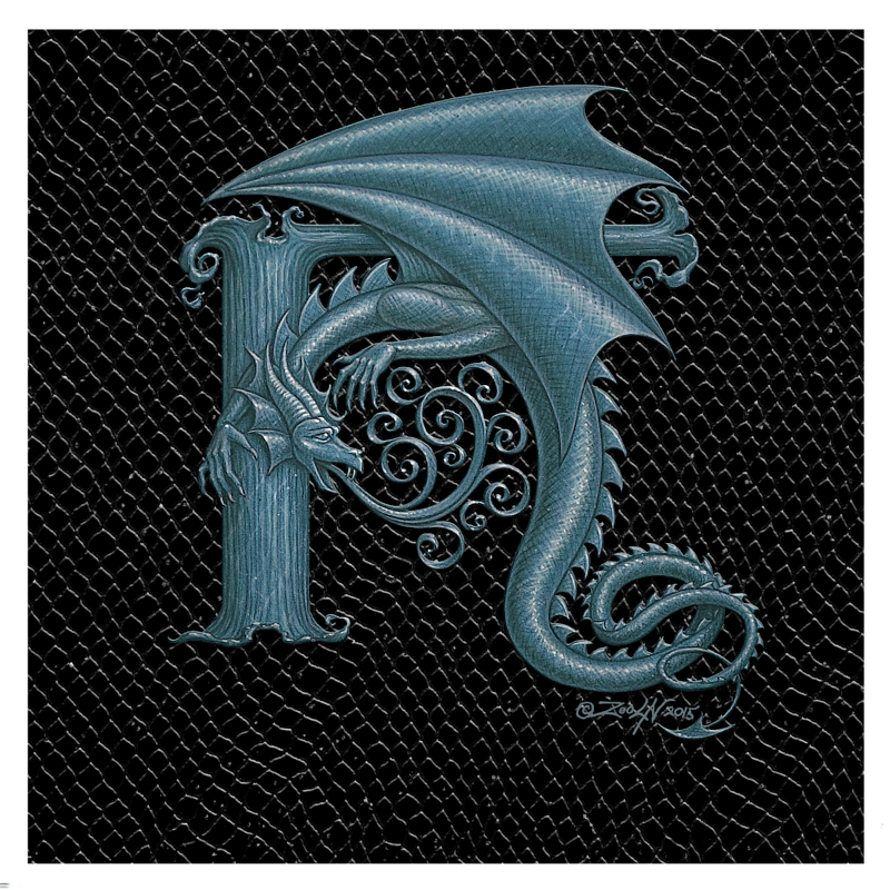 "Print Dragon Letter 'H', 8""x 8"" Silver on Jet Black Dragonskin by Sue Ellen Brown"