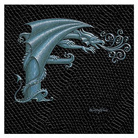 "Print Dragon F, 6""x 6"" Silver on Jet Black Dragonskin by Sue Ellen Brown"
