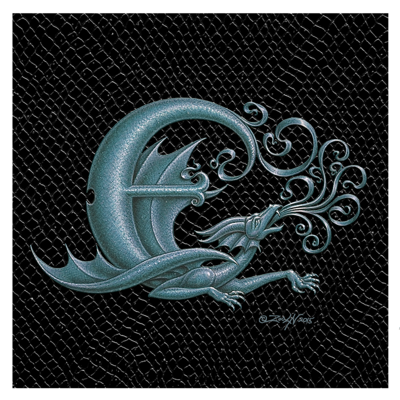 "Print Dragon Letter 'E', Silver on Jet Black Dragonskin, 8""x8""  by Sue Ellen Brown"