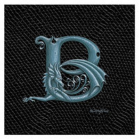 "Print Dragon Letter 'B', Silver on Jet Black Dragonskin, 6""x6"" by Sue Ellen Brown"