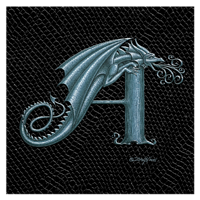 "Print Dragon Letter 'A', Silver on Jet Black Dragonskin, 8""x8""  by Sue Ellen Brown"