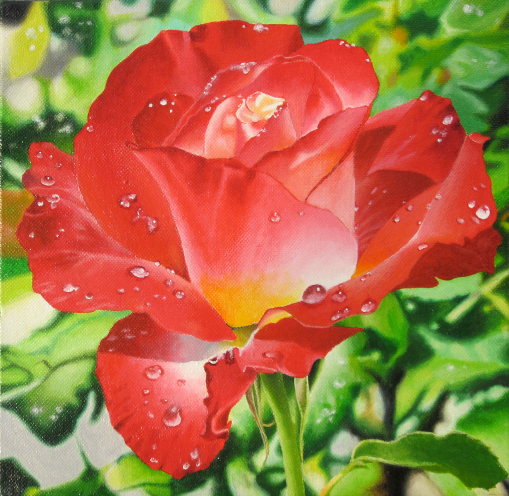 Acrylic painting WET ROSE by Art Carrillo