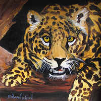 Oil painting  Leopard Face by Barbara Haviland