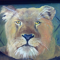 Oil painting Lioness Face  by Barbara Haviland