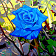 Oil painting The Blue Rose  by Guntis Jansons