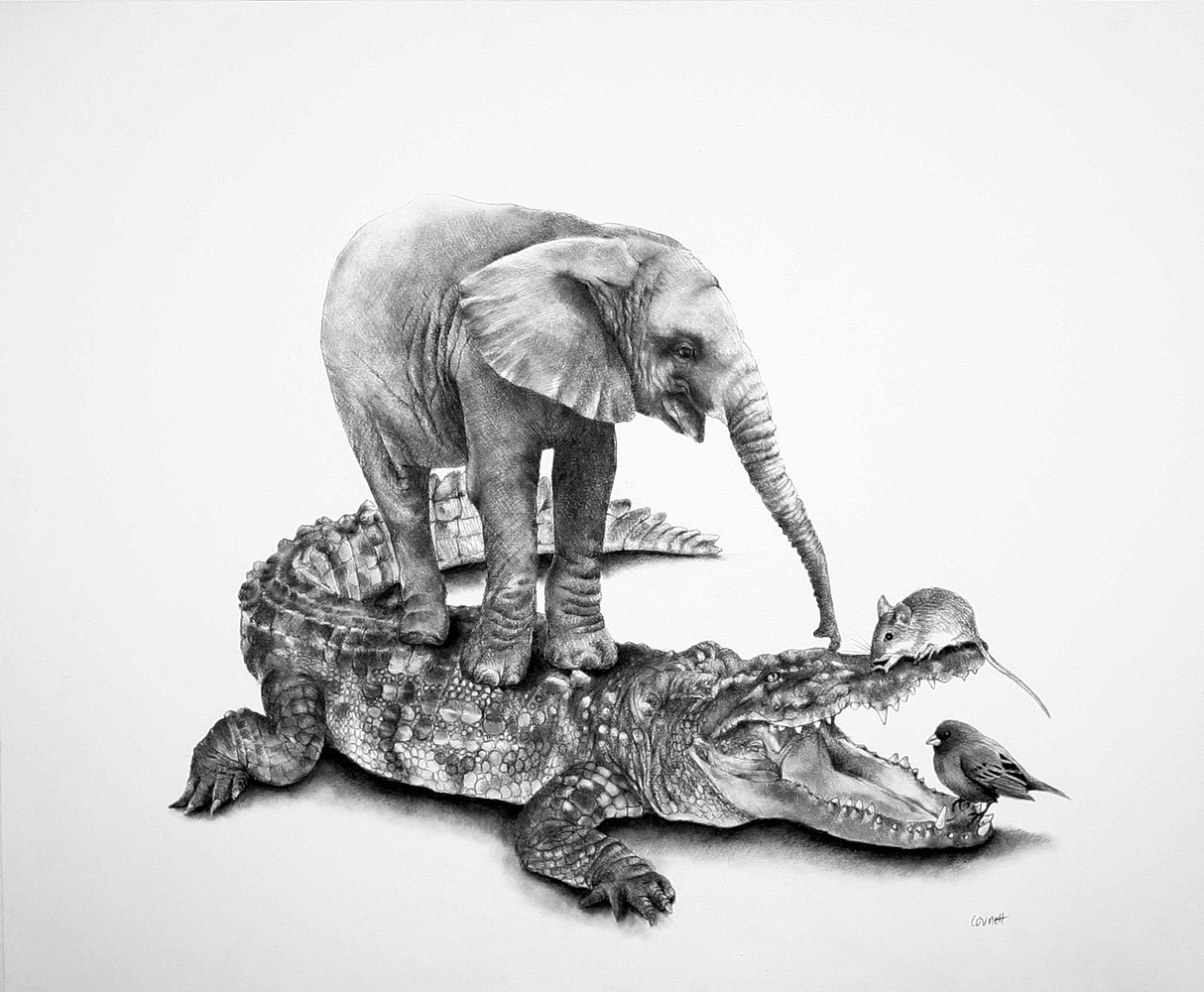 Drawing Teasing the Crocodile by Ellen Cornett