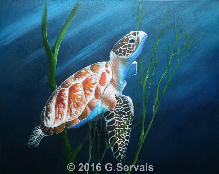 Acrylic painting Seaturtle by George Servais
