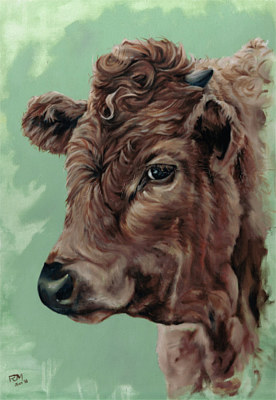 Oil painting BrownCowYoungScan by Richard Mountford