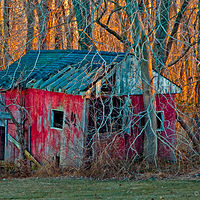 Print JohnStyner_Photography_OvergrownShack by George Servais
