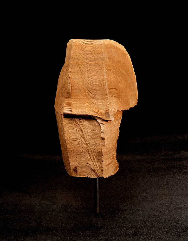 Sculpture Longing #30 by Sonny  Assu
