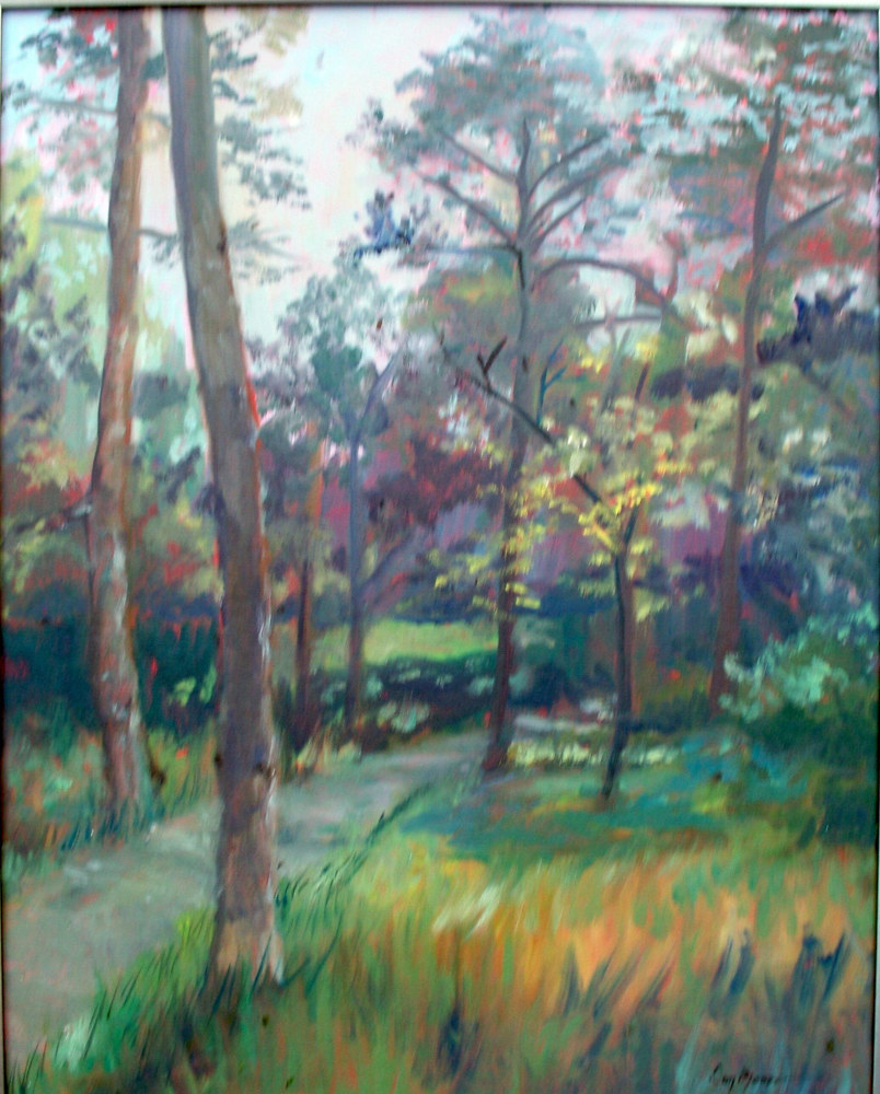 Trail in The Park - 20 x 16 by Don Moore