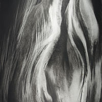 "Rayne Tunley, ""Efflorescence"", 40in x 26in, Charcoal by Rayne Tunley"