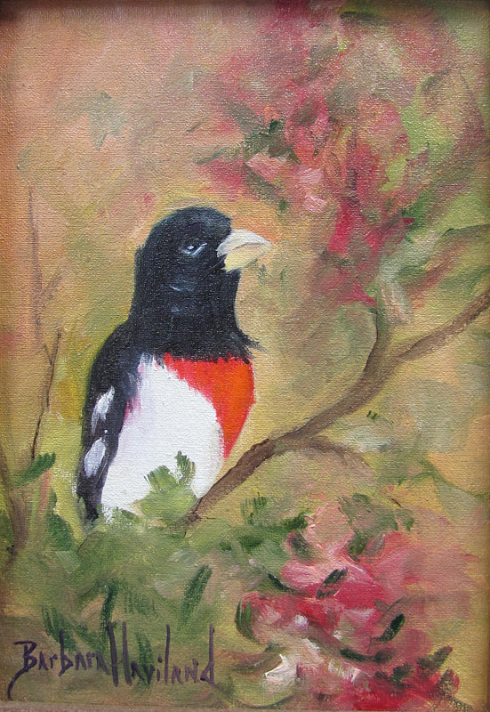 Oil painting  Grosbeak  Feathered Friend by Barbara Haviland
