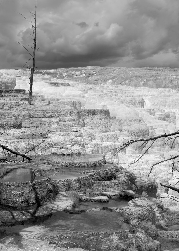 Landscape, Yellowstone #8 by Kathleen Gross
