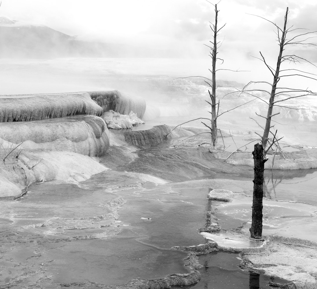 Landscape, Yellowstone #7 by Kathleen Gross