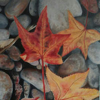 Oil painting On the Rocks  by Jeanie Bates
