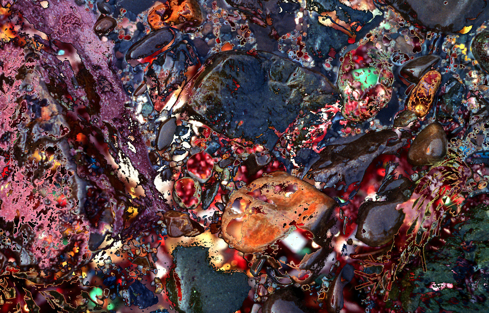 Photography Tidepool Series #4 by Kathleen Gross