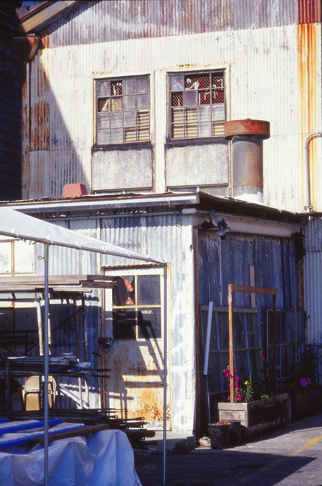 Dogpatch Factory by Kathleen Gross