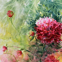 Watercolor Peony and Friends by Wanda Hawse