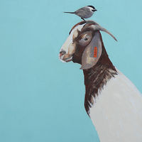 Oil painting Chickadeegoat, 2017 by Edith dora Rey