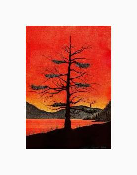 Print Eagle Tree Sunset ( WM )  by Lawrie  Dignan