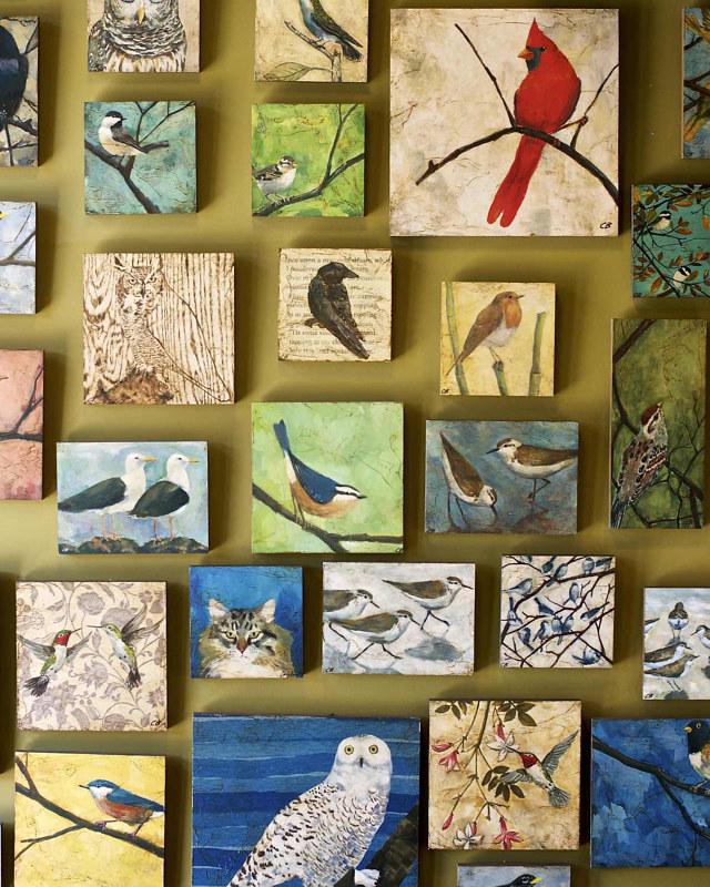 Wall of Cody Blomberg's Bird art Prints @ Paxton Gate by Cody Blomberg