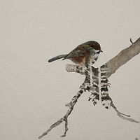 "Acrylic painting Daniel St-Amant ""Earth Birds:  Sparrow"" by Julie Gladstone"