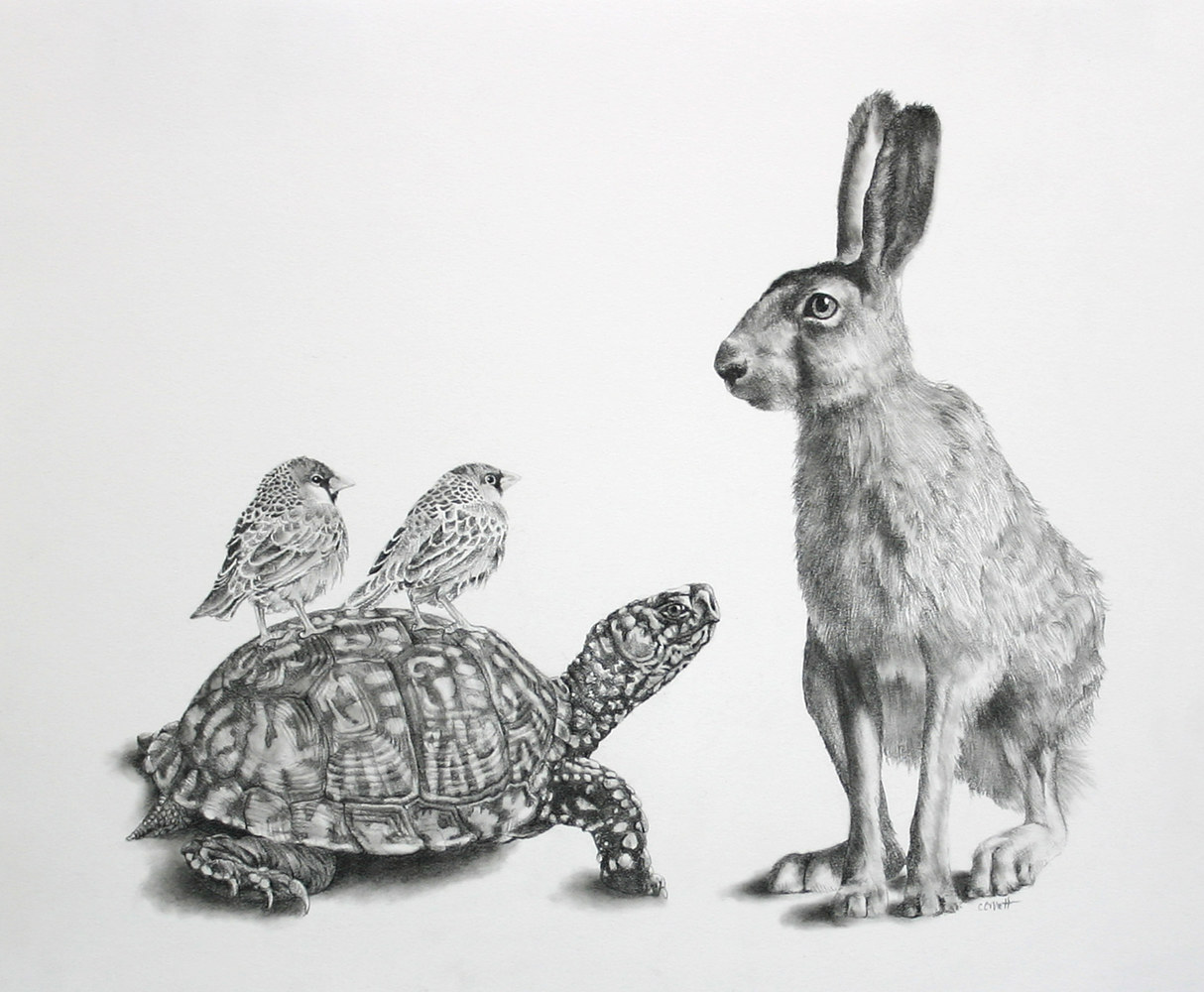 Drawing The Tortoise, the Hare and Two Birds by Ellen Cornett