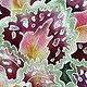 Watercolor Coleus by Vicki Allesia